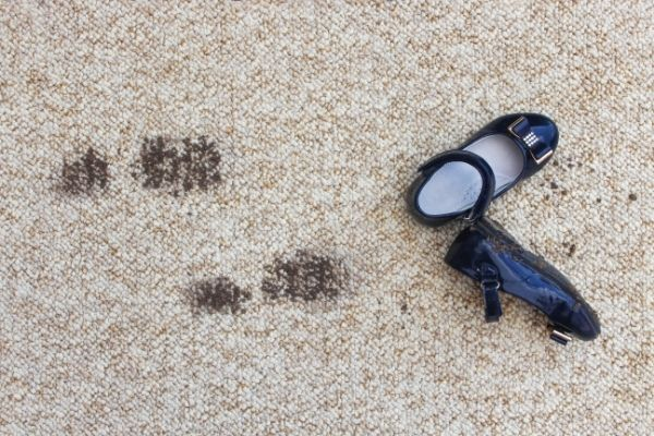 you can expect your carpet to last between 5 and 15 years before it needs to be replaced